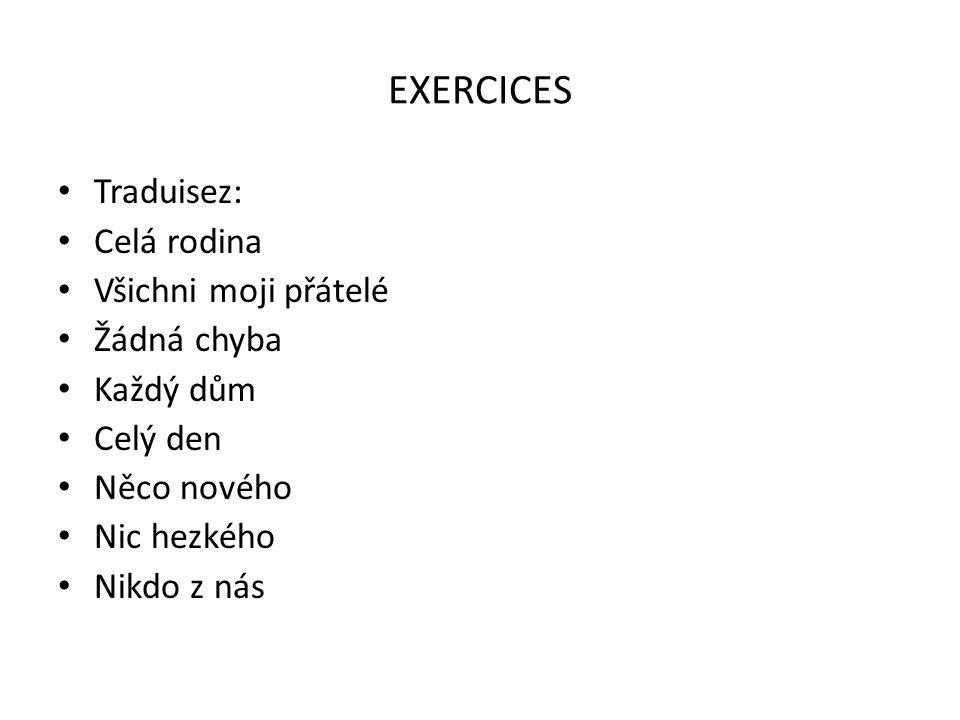 EXERCICES Traduisez: Celá rodina Všichni moji přátelé Žádná chyba