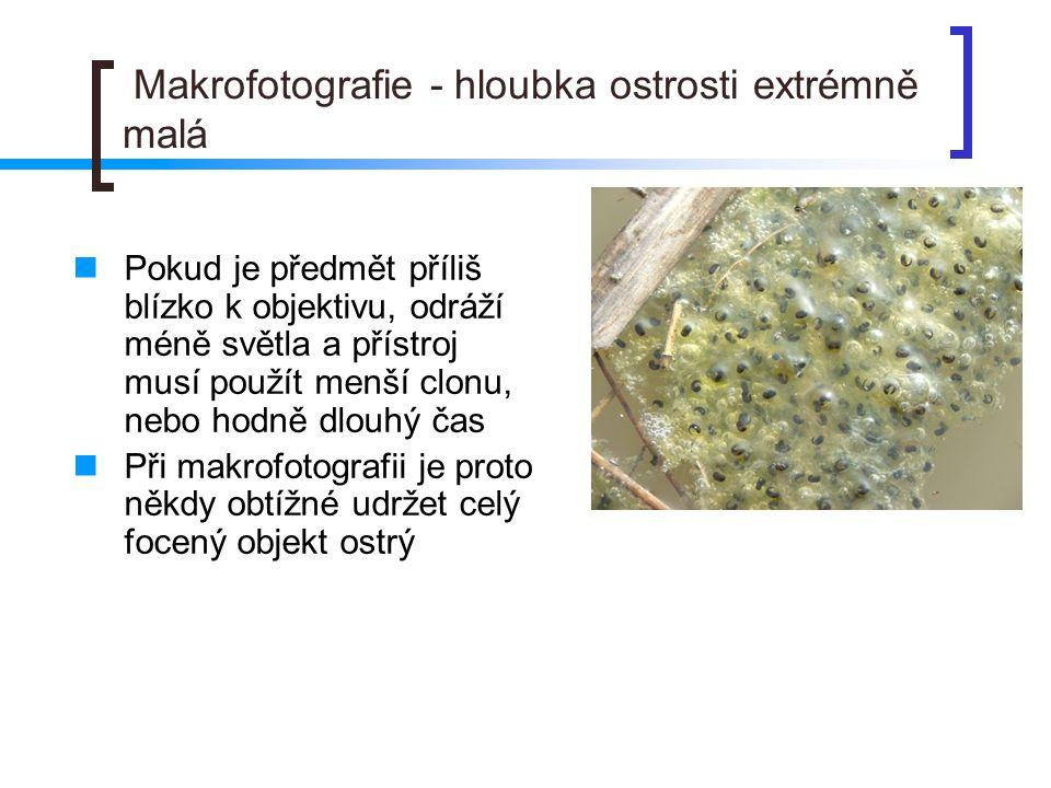 Makrofotografie - hloubka ostrosti extrémně malá