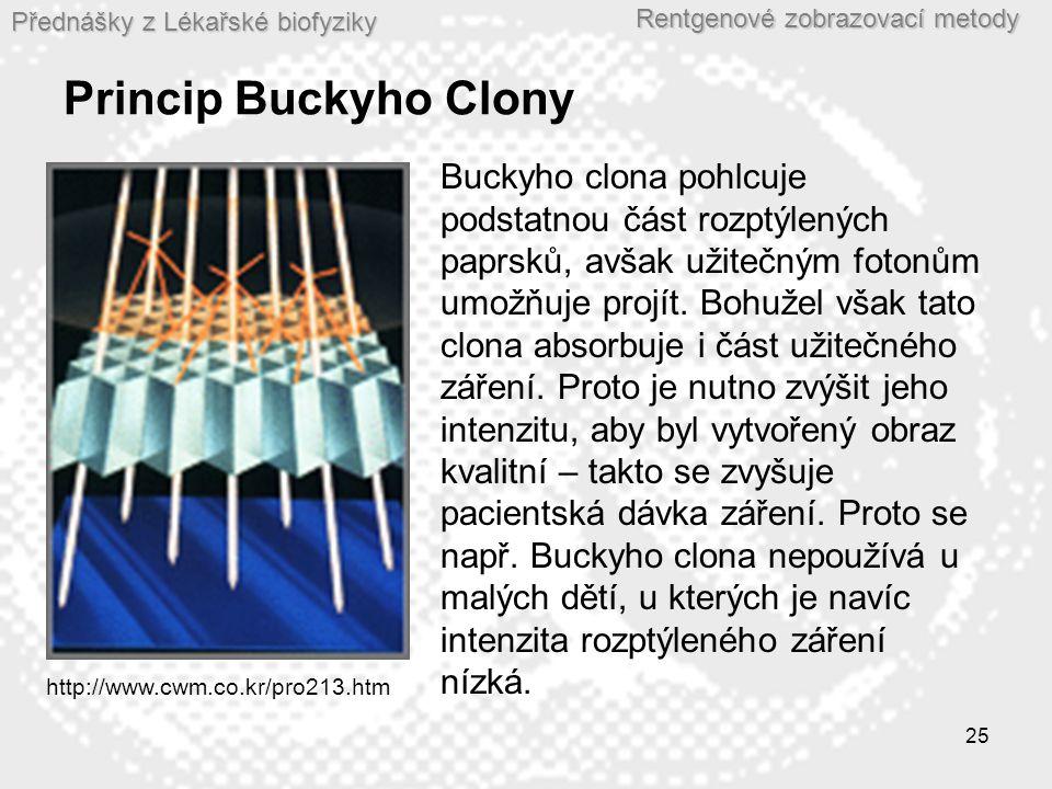 Princip Buckyho Clony