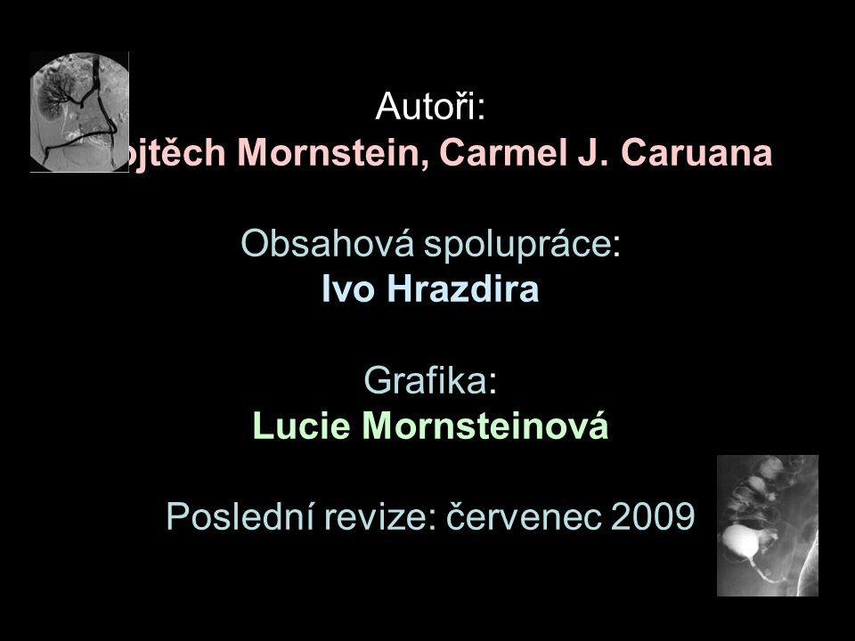 Autoři: Vojtěch Mornstein, Carmel J