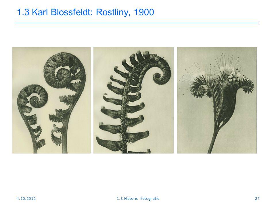 1.3 Karl Blossfeldt: Rostliny, 1900