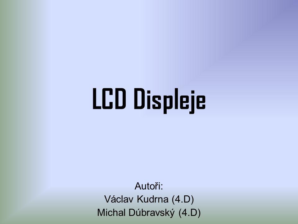 Autoři: Václav Kudrna (4.D) Michal Dúbravský (4.D)