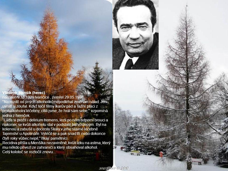 Vladimír Menšík (herec) narozen 9.10.1929 Ivančice , zemřel 29.05.1988
