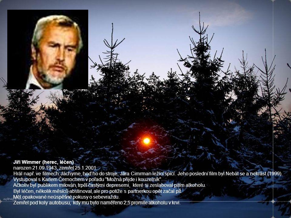 Jiří Wimmer (herec, léčen) narozen 21.09.1943, zemřel 25.1.2001