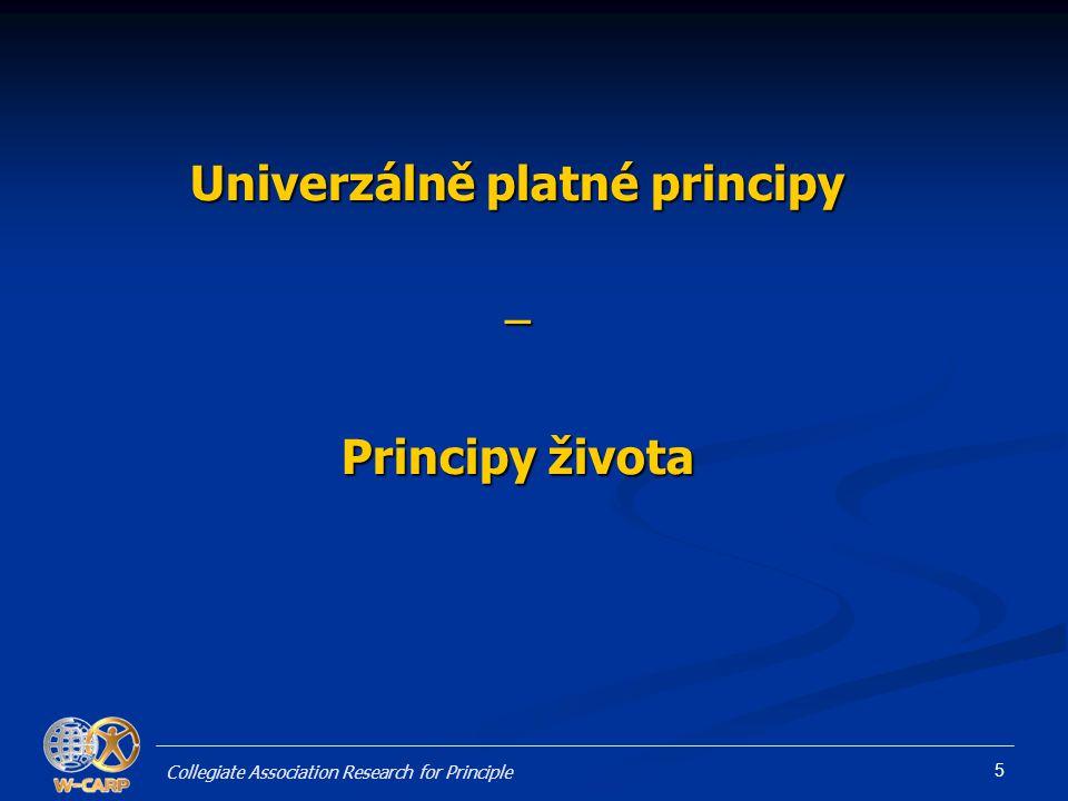 Univerzálně platné principy