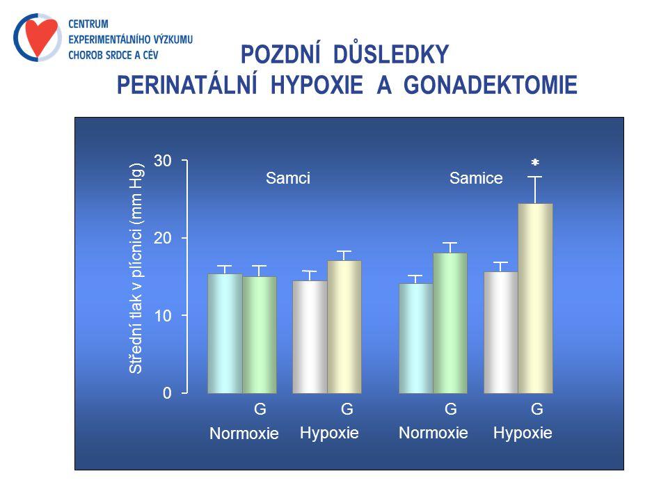 POZDNÍ DŮSLEDKY PERINATÁLNÍ HYPOXIE A GONADEKTOMIE