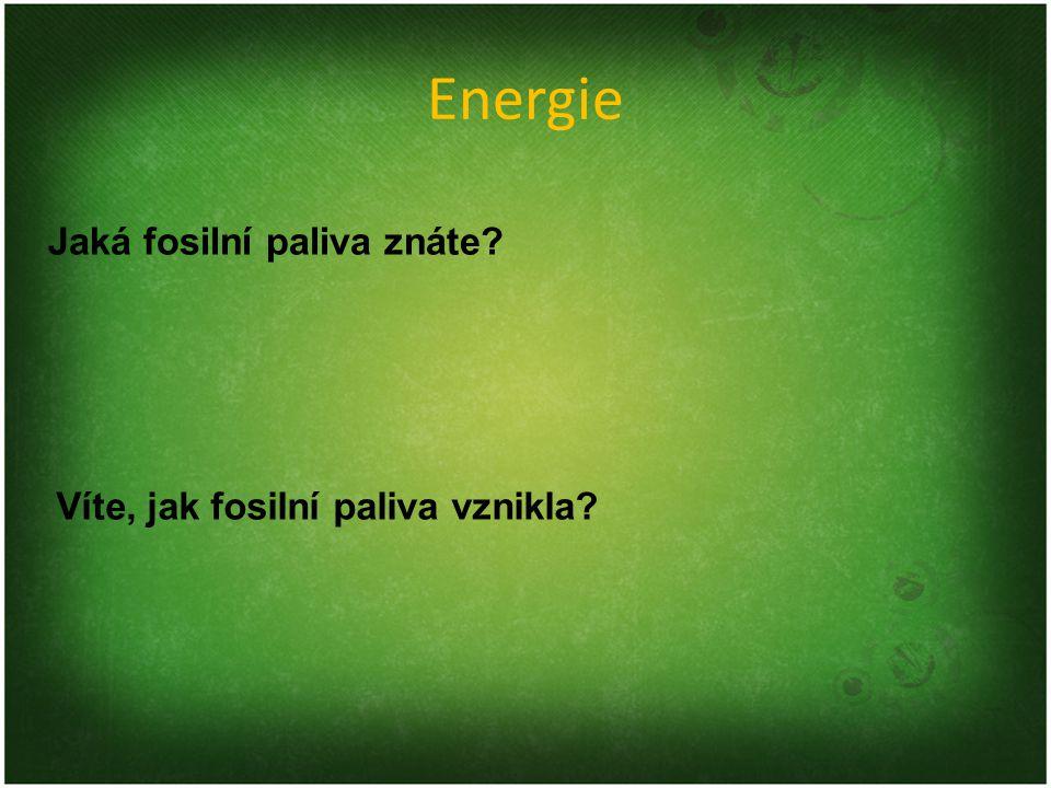 Energie Jaká fosilní paliva znáte Víte, jak fosilní paliva vznikla