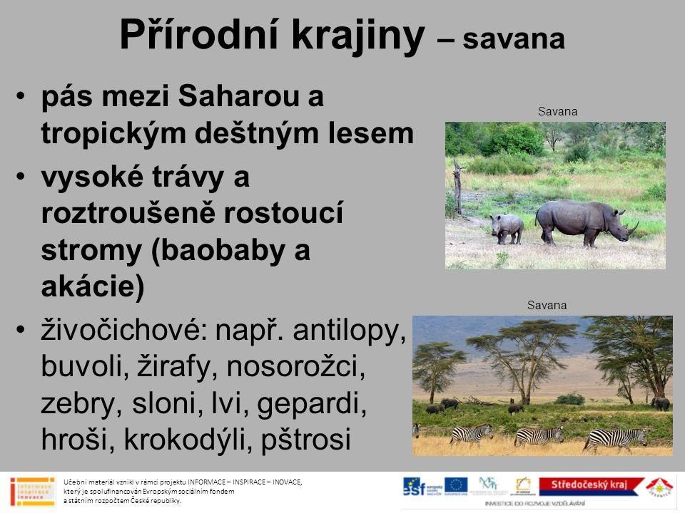 Přírodní krajiny – savana