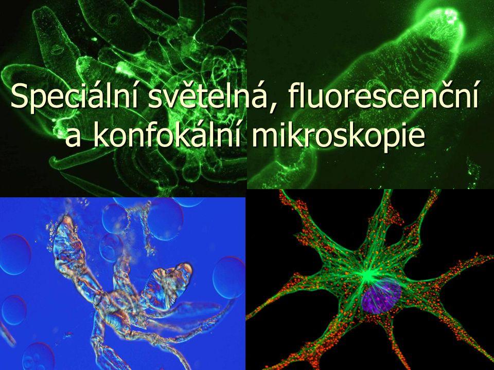 Speciální světelná, fluorescenční a konfokální mikroskopie