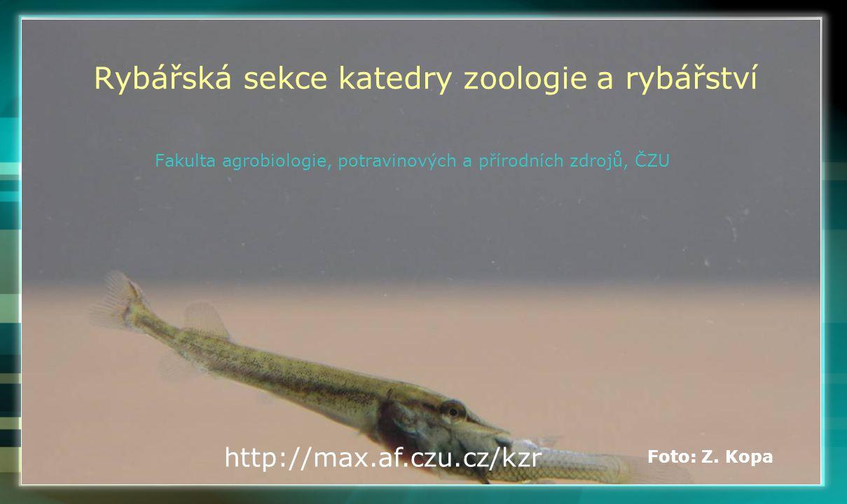 Rybářská sekce katedry zoologie a rybářství