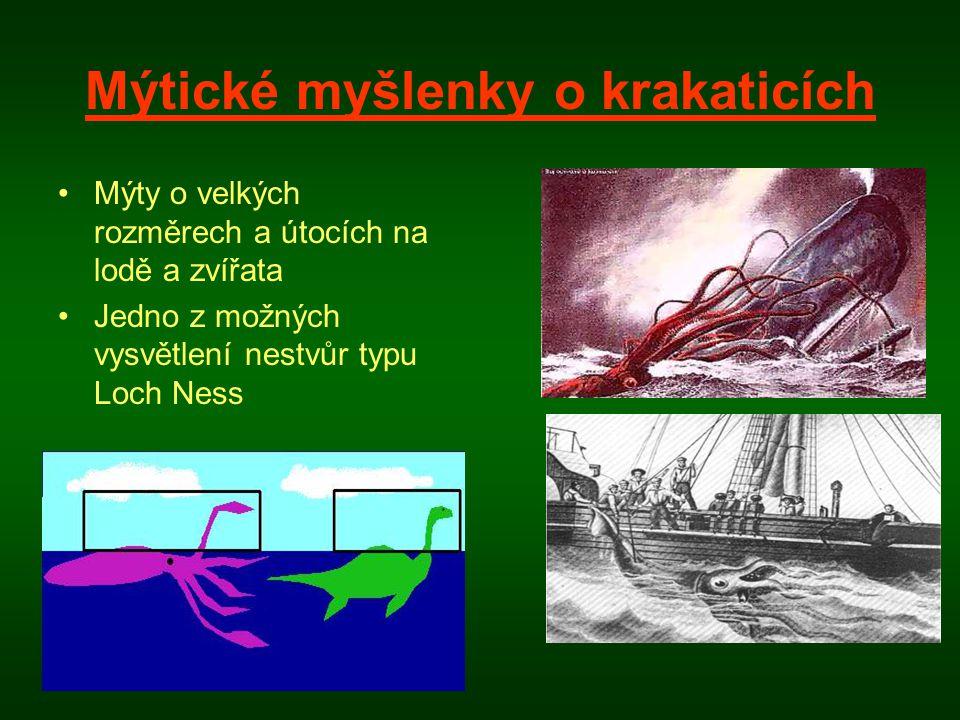 Mýtické myšlenky o krakaticích