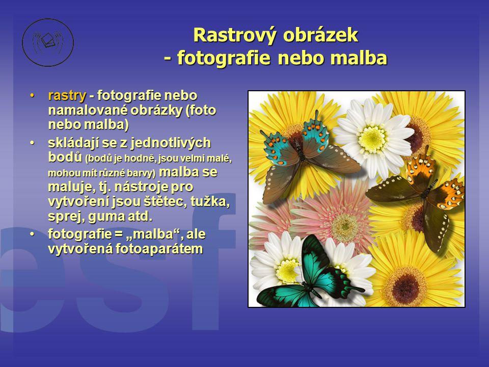 Rastrový obrázek - fotografie nebo malba