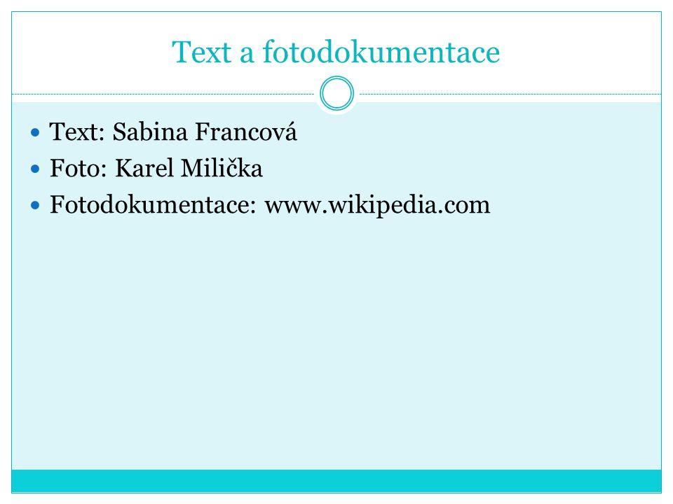 Text a fotodokumentace