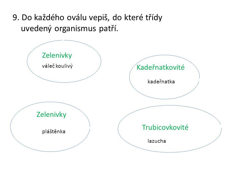 9. Do každého oválu vepiš, do které třídy uvedený organismus patří.