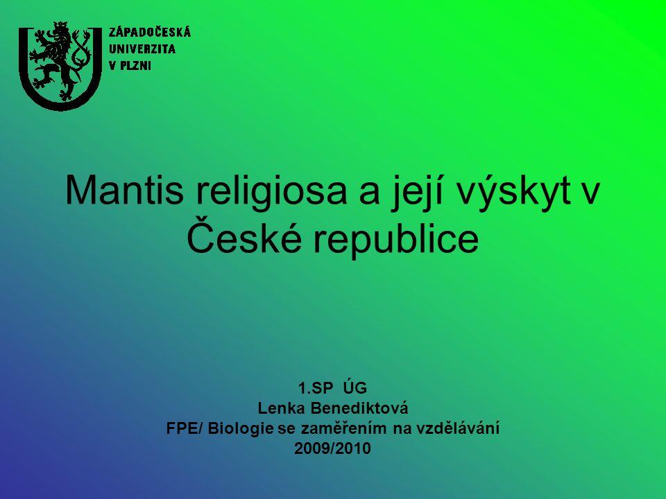 Mantis religiosa a její výskyt v České republice