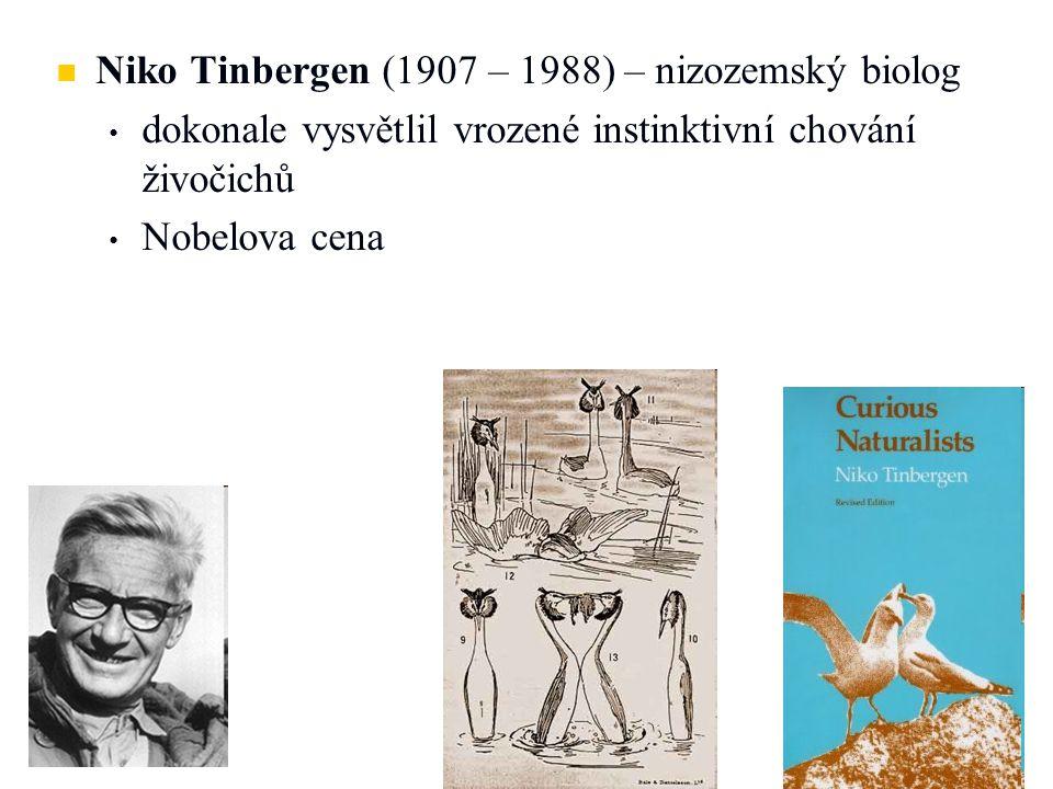 Niko Tinbergen (1907 – 1988) – nizozemský biolog
