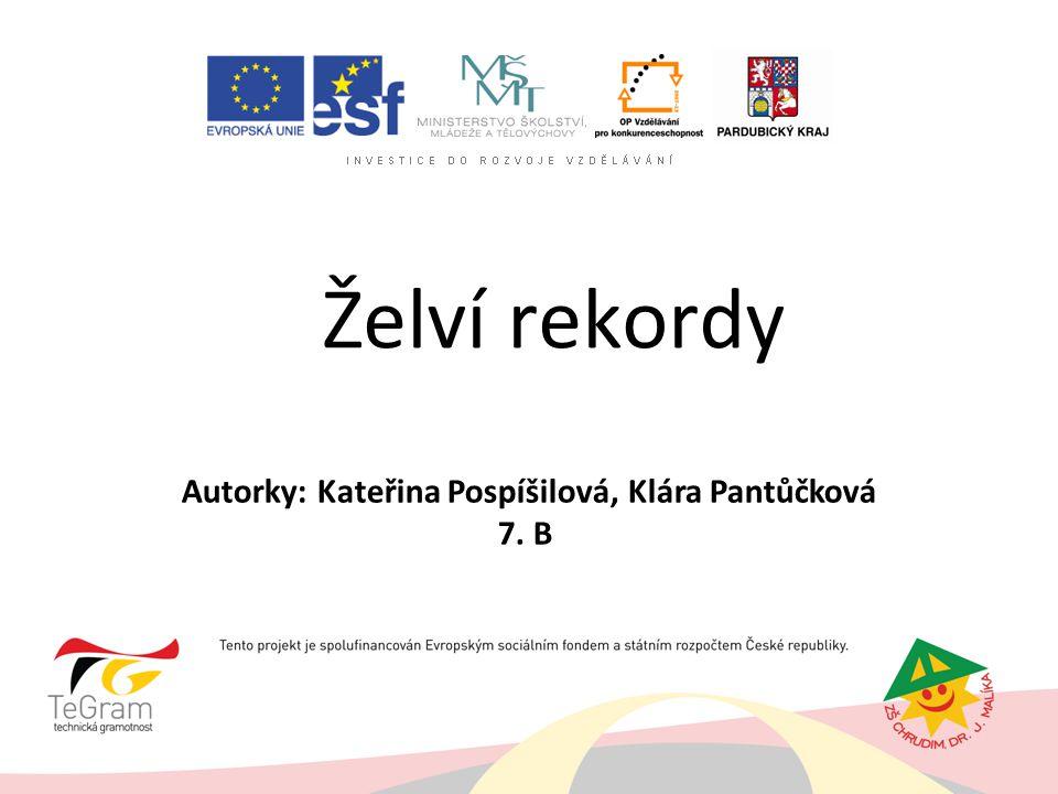 Autorky: Kateřina Pospíšilová, Klára Pantůčková 7. B