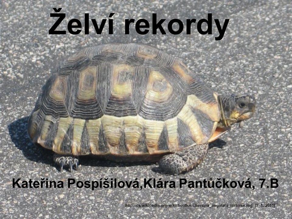 Kateřina Pospíšilová,Klára Pantůčková, 7.B