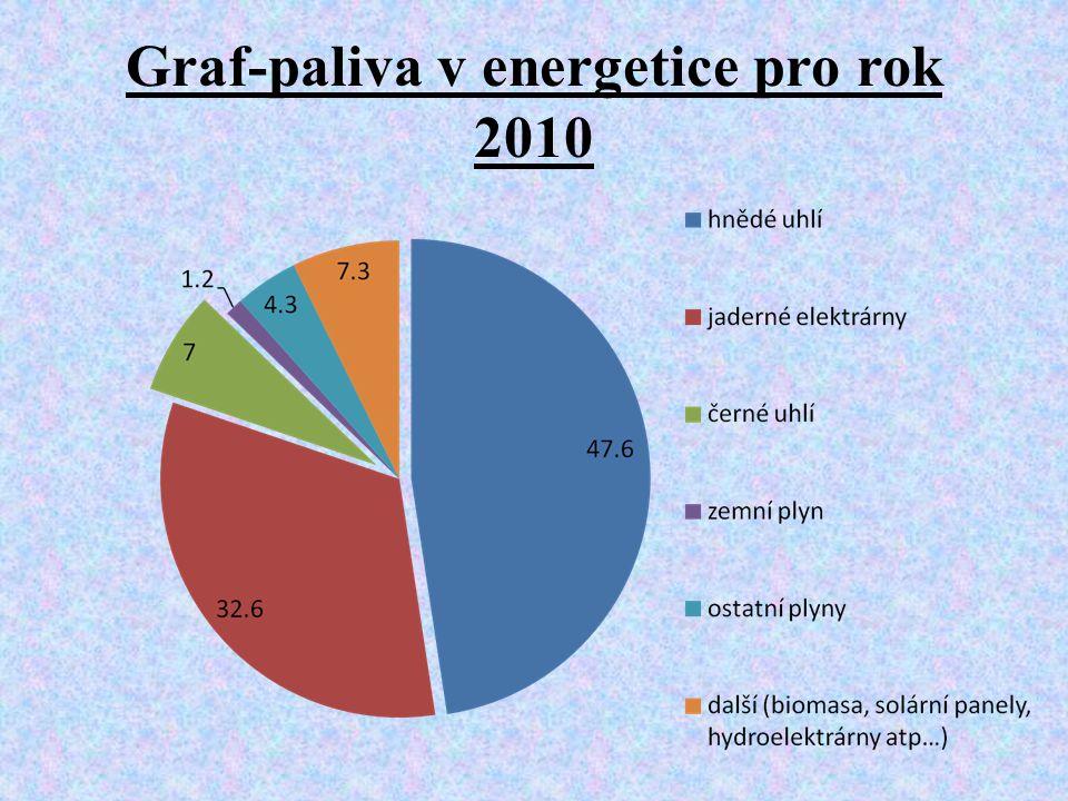 Graf-paliva v energetice pro rok 2010