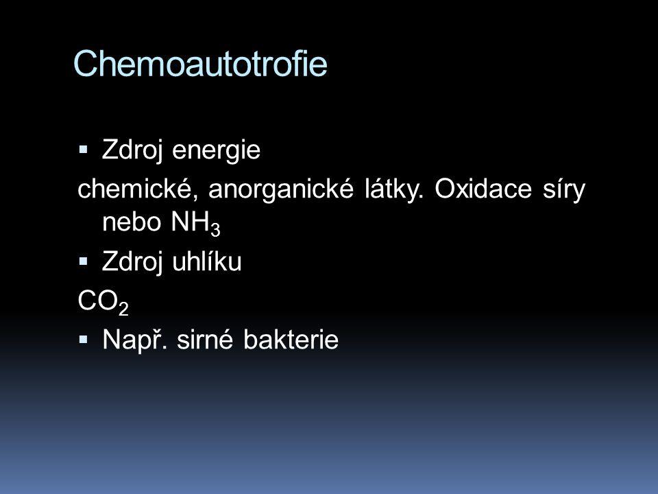 Chemoautotrofie Zdroj energie