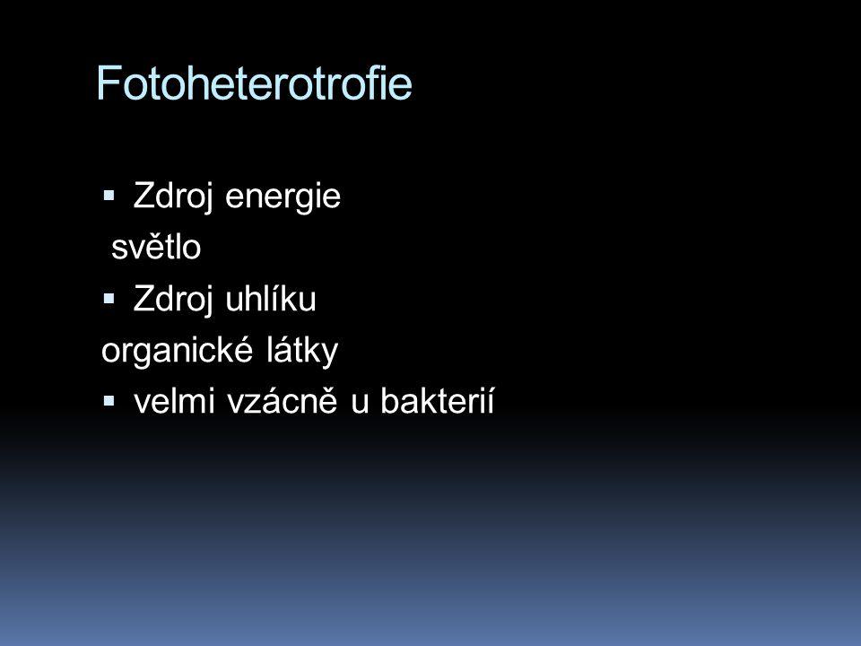 Fotoheterotrofie Zdroj energie světlo Zdroj uhlíku organické látky