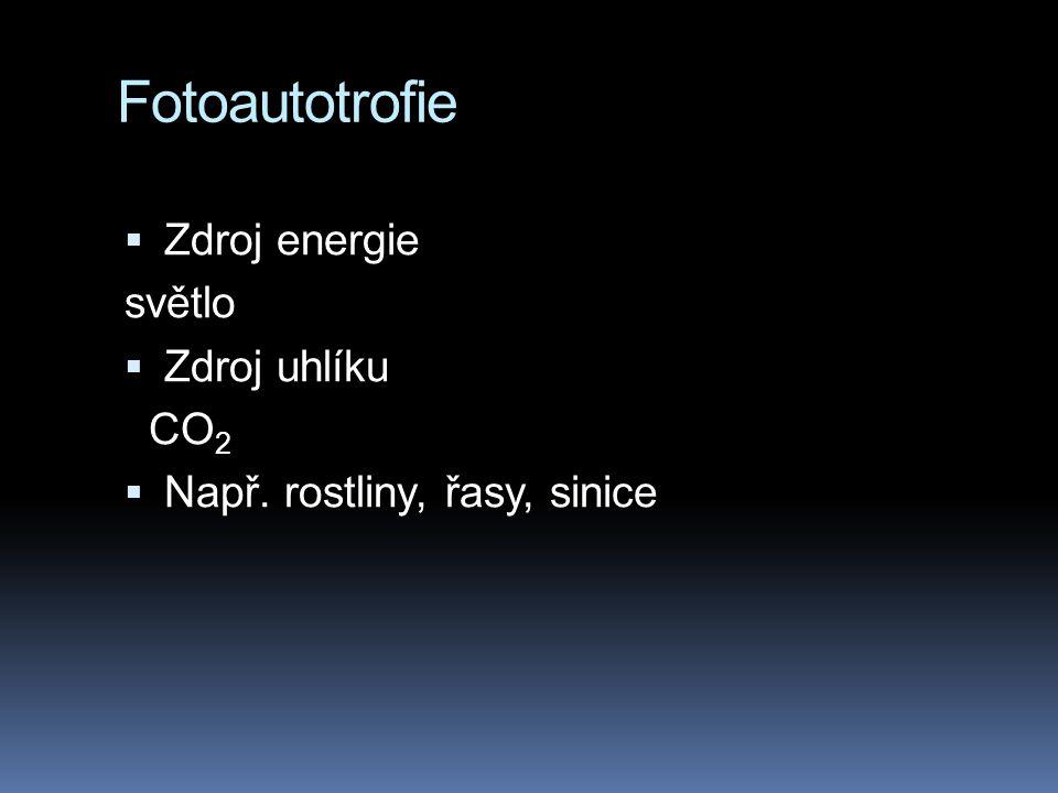 Fotoautotrofie Zdroj energie světlo Zdroj uhlíku CO2