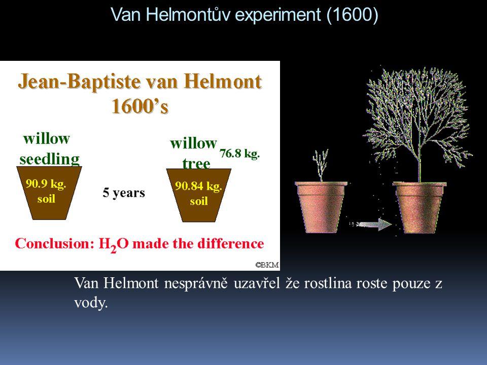 Van Helmontův experiment (1600)