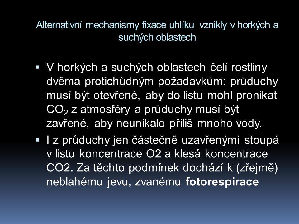 Alternativní mechanismy fixace uhlíku vznikly v horkých a suchých oblastech