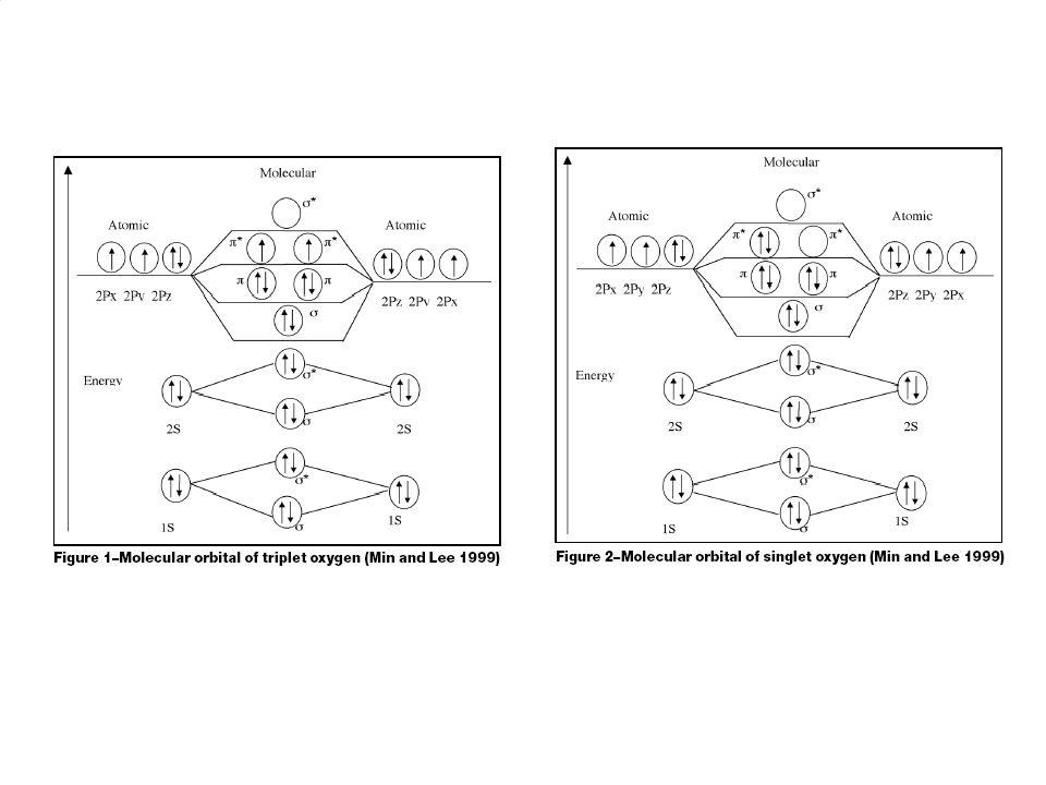 ¨ . O—O Volné radikály Částice s nepárovým elektronem 2s 2p