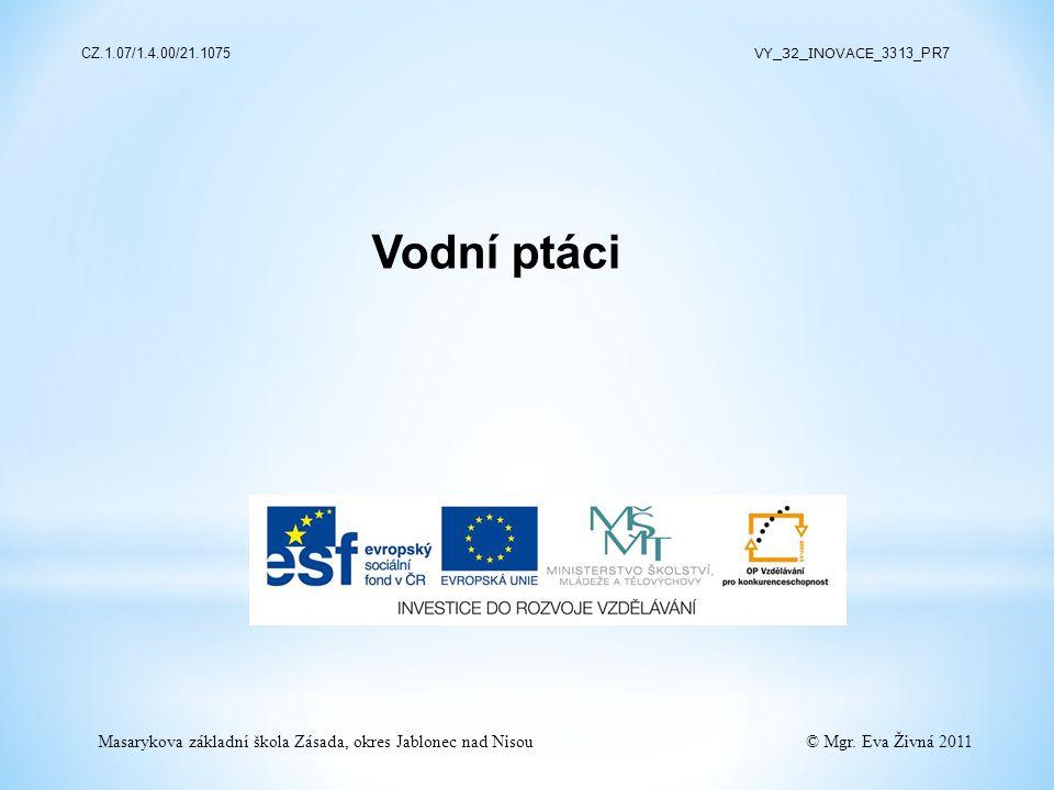 Vodní ptáci Masarykova základní škola Zásada, okres Jablonec nad Nisou