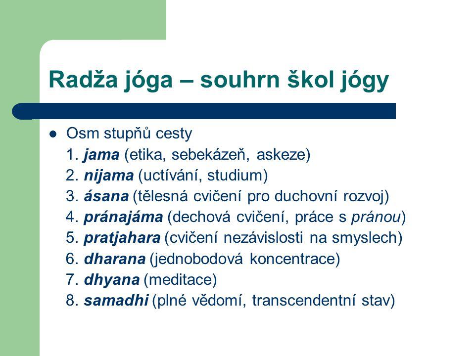 Radža jóga – souhrn škol jógy
