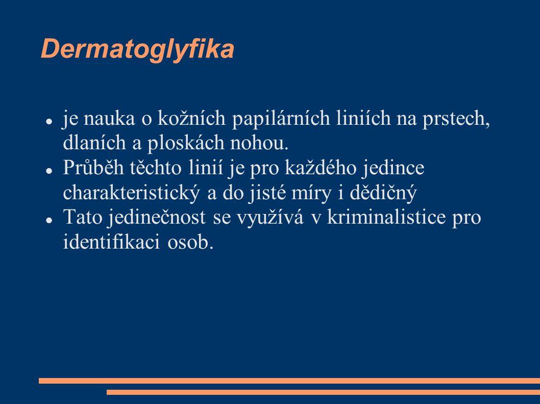 Dermatoglyfika je nauka o kožních papilárních liniích na prstech, dlaních a ploskách nohou.