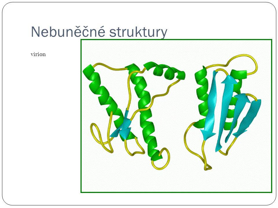 Nebuněčné struktury virion