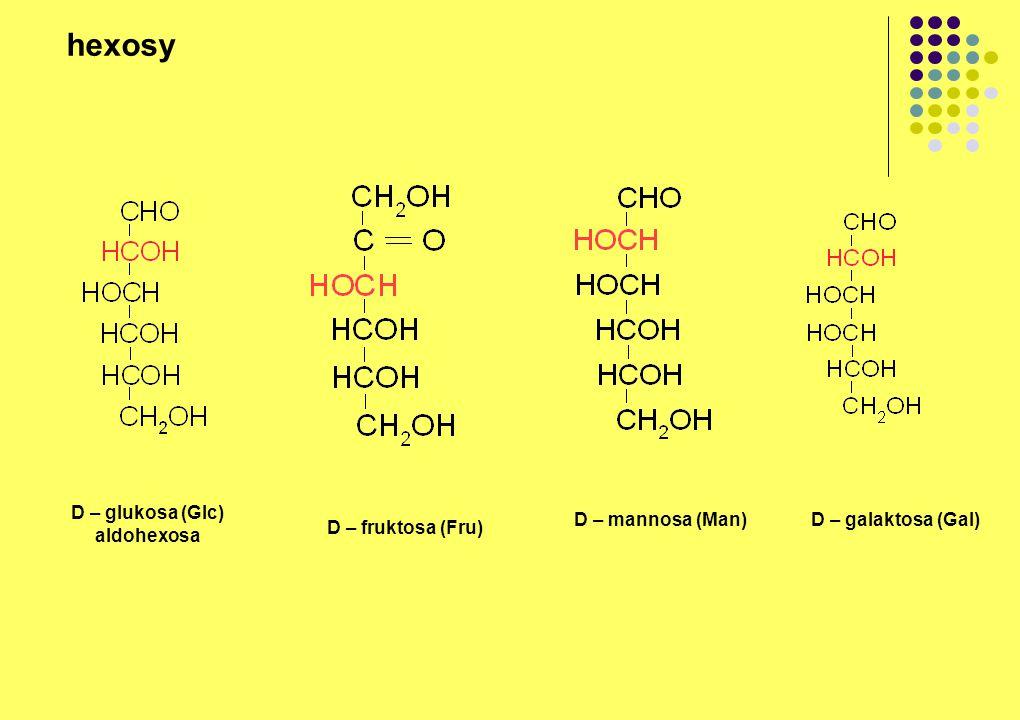 D – glukosa (Glc) aldohexosa