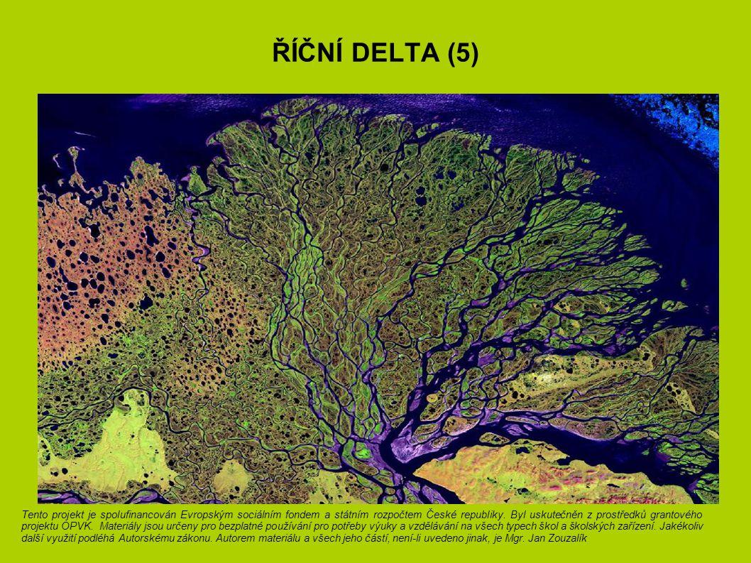 Říční delta (5)