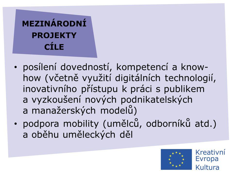 mezinárodní projekty cíle