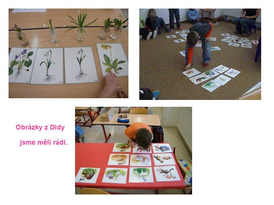 Obrázky z Didy jsme měli rádi.