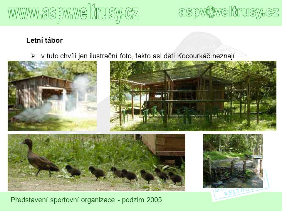 www.aspv.veltrusy.cz aspv@veltrusy.cz Letní tábor