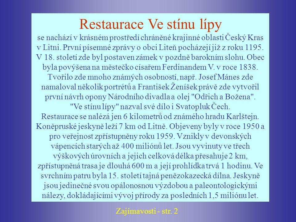 Restaurace Ve stínu lípy