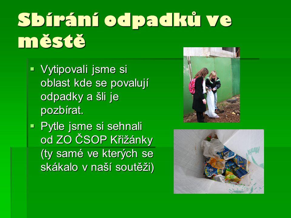 Sbírání odpadků ve městě