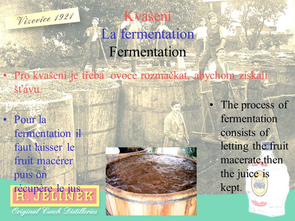 Kvašení La fermentation Fermentation