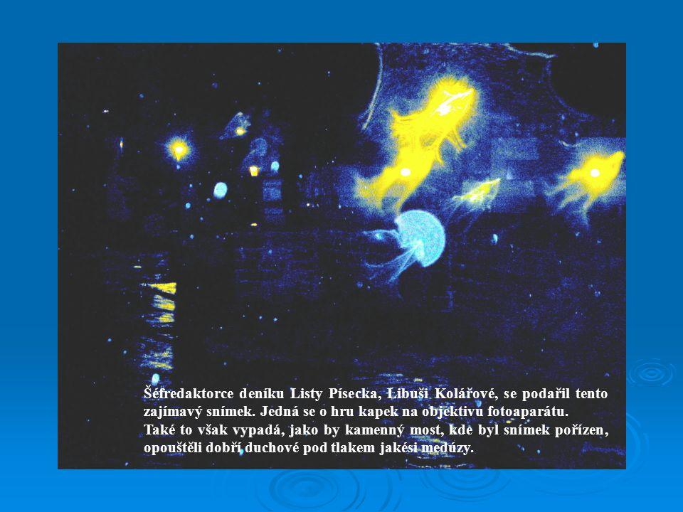 Šéfredaktorce deníku Listy Písecka, Libuši Kolářové, se podařil tento zajímavý snímek. Jedná se o hru kapek na objektivu fotoaparátu.
