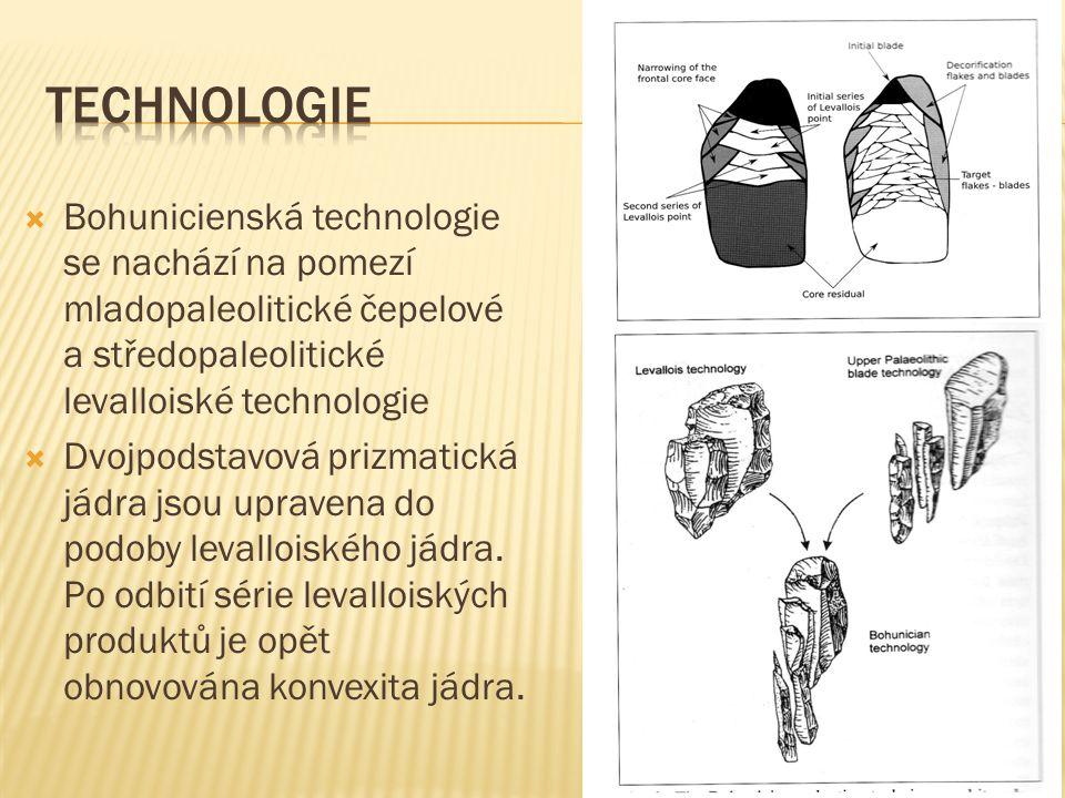 Technologie Bohunicienská technologie se nachází na pomezí mladopaleolitické čepelové a středopaleolitické levalloiské technologie.