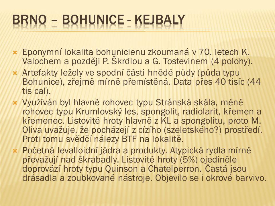 Brno – Bohunice - Kejbaly