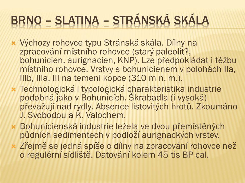 Brno – Slatina – Stránská skála