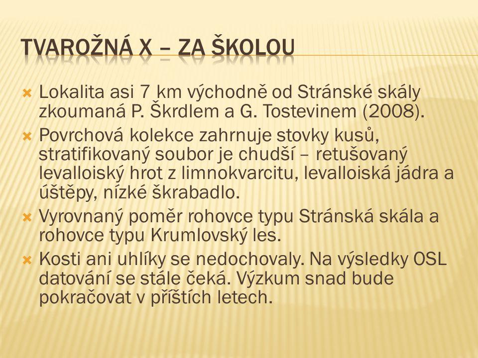 Tvarožná X – Za Školou Lokalita asi 7 km východně od Stránské skály zkoumaná P. Škrdlem a G. Tostevinem (2008).