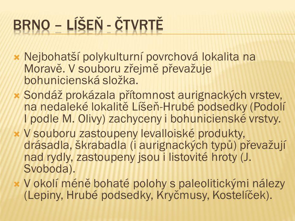 Brno – Líšeň - Čtvrtě Nejbohatší polykulturní povrchová lokalita na Moravě. V souboru zřejmě převažuje bohunicienská složka.