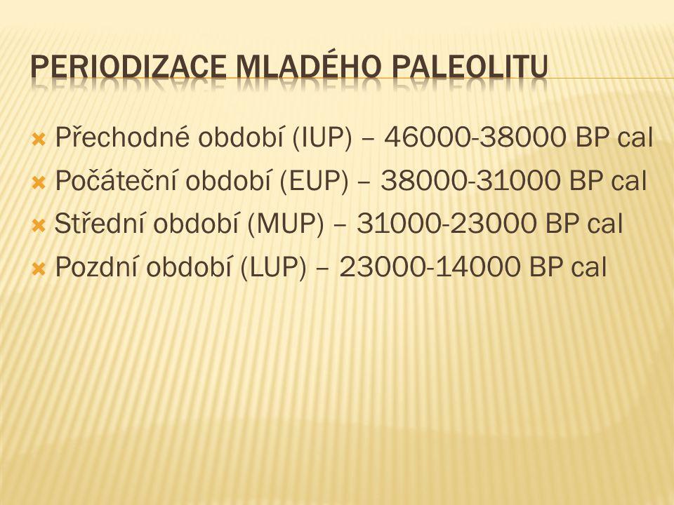 Periodizace Mladého Paleolitu