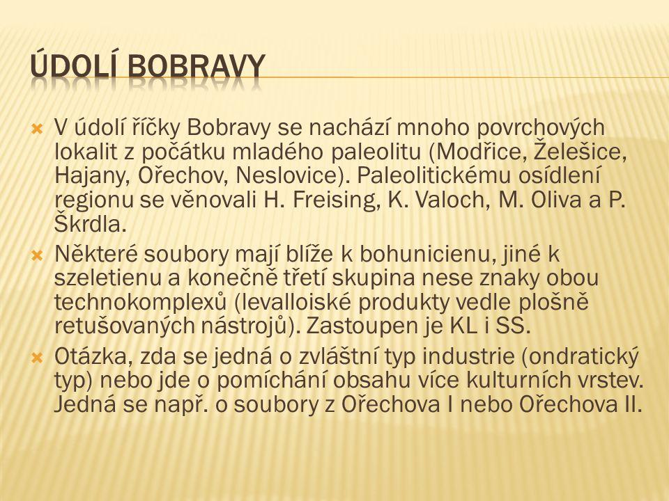Údolí Bobravy