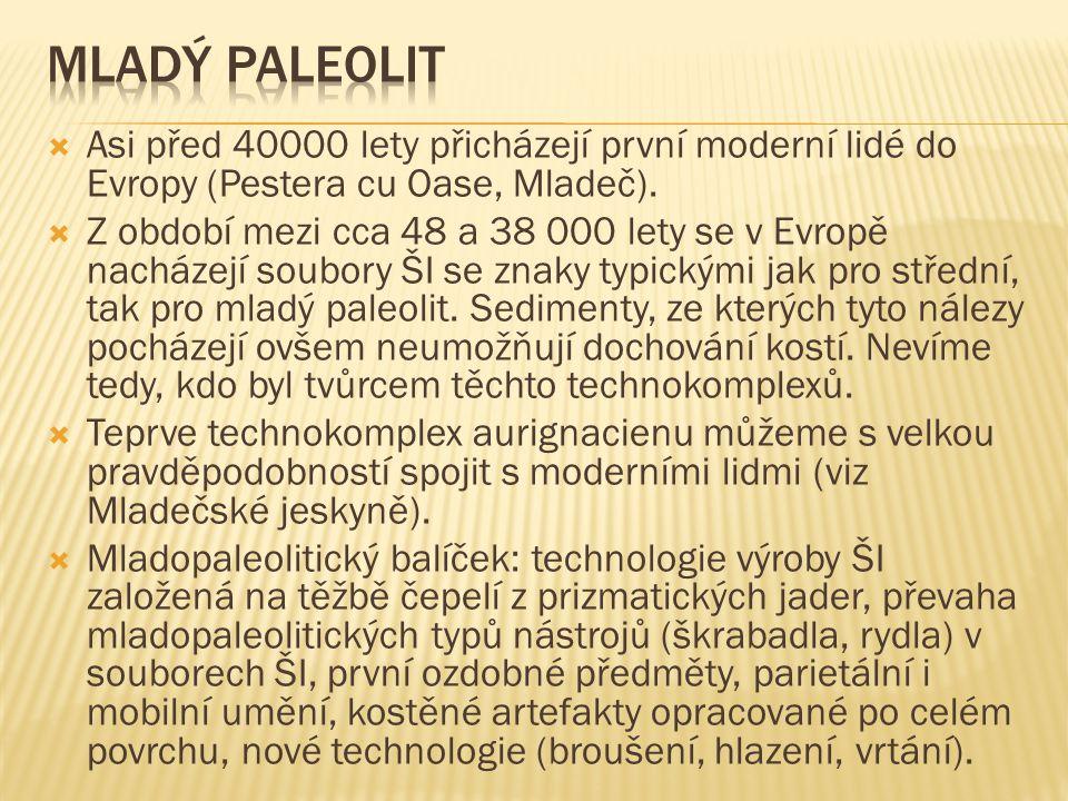 Mladý Paleolit Asi před 40000 lety přicházejí první moderní lidé do Evropy (Pestera cu Oase, Mladeč).